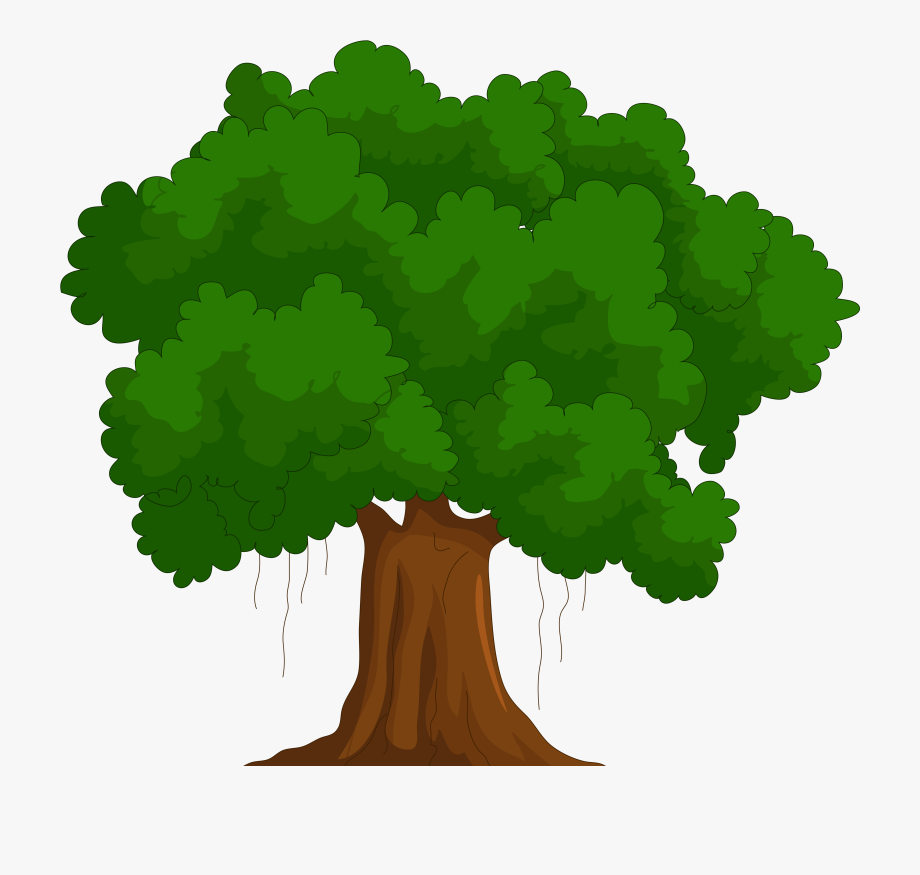 Clipart Of Tree, Trees And Called.