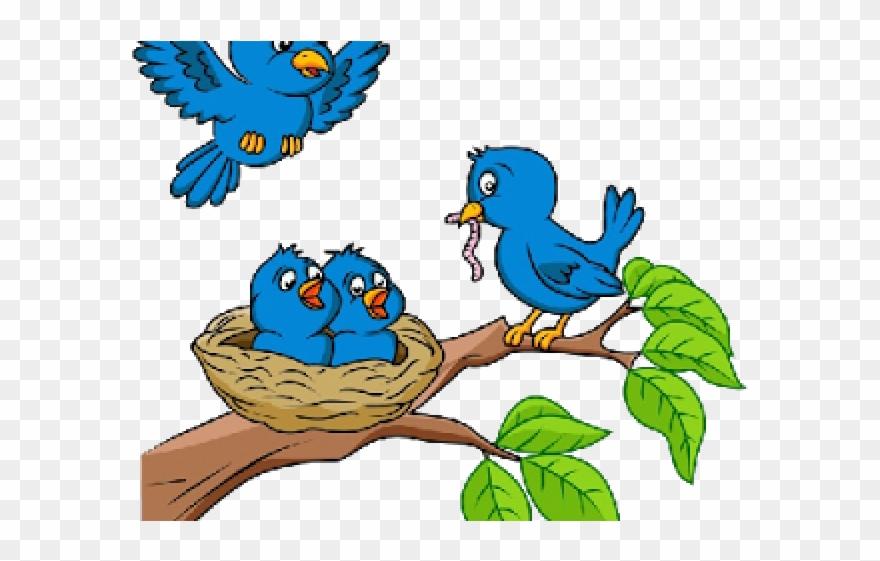 Cartoon Picture Birds In Nests Clipart (#457087).