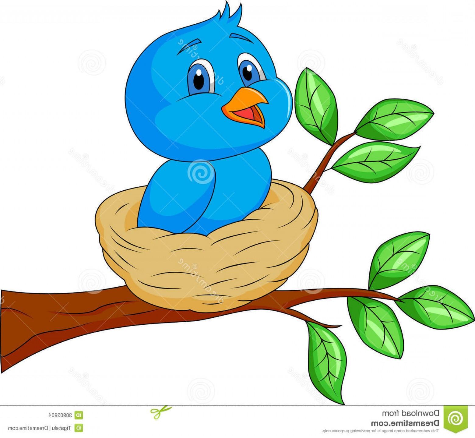 Bird In The Nest Clipart.