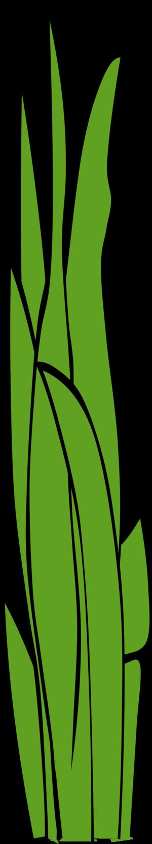 Blade of grass clip art.