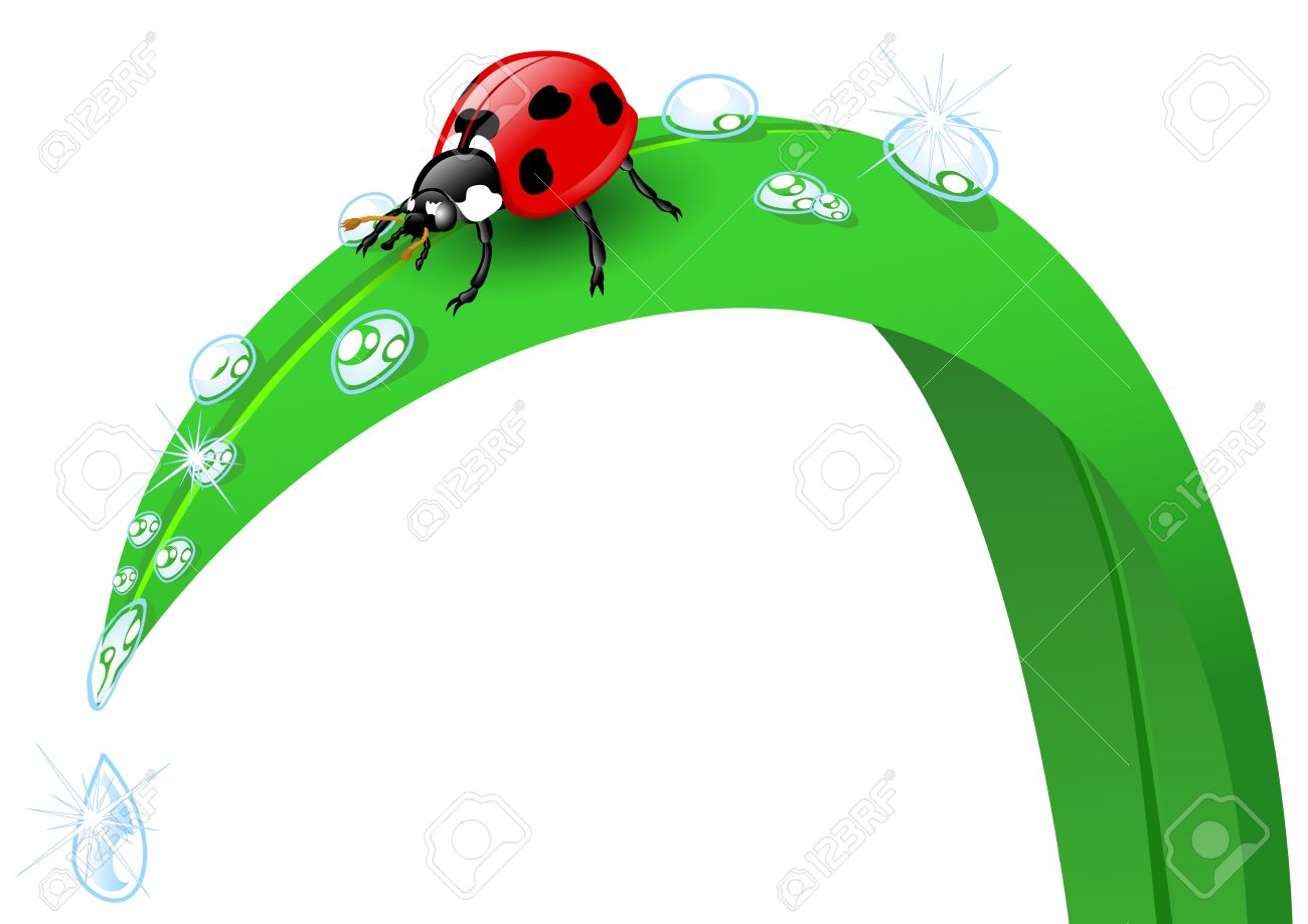 Illustration Of A Ladybird On A Blade Of Grass Royalty Free.