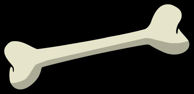 Bone Marrow Clip Art.