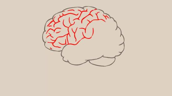 How To Draw A Clipart Brain.