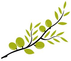 olive branch inspiration..