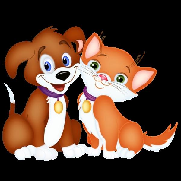 Cat Dog Cartoon.