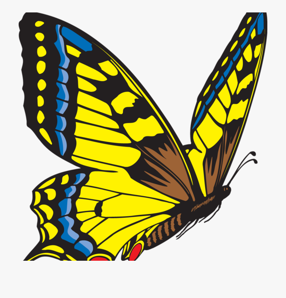Butterfly Clipart Yellow Butterfly Clipart Clipart.