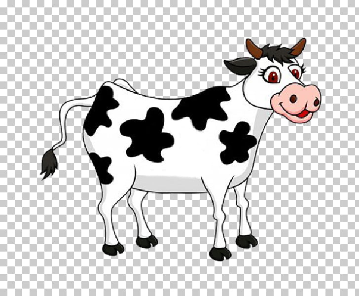 Cattle , cows PNG clipart.