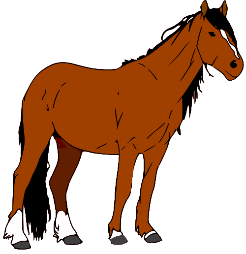Free Image Of Horse, Download Free Clip Art, Free Clip Art.