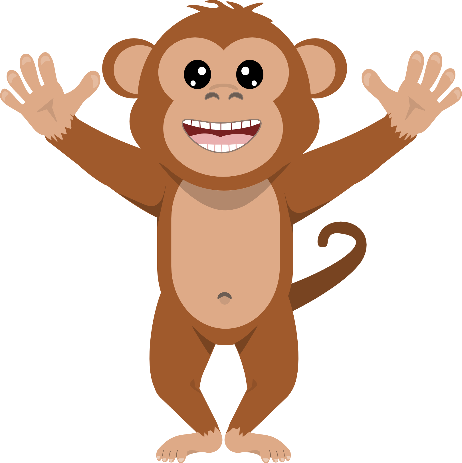 Monkey Transparent PNG.