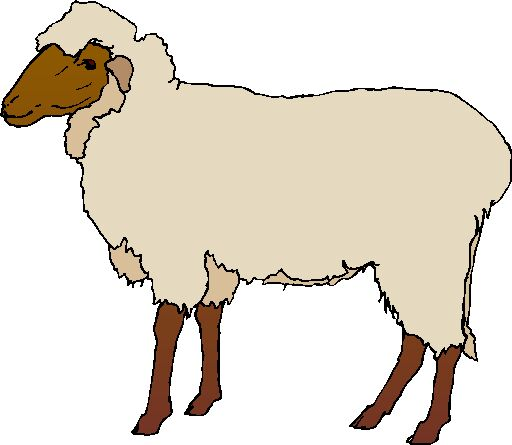 Free Sheep Cliparts, Download Free Clip Art, Free Clip Art.