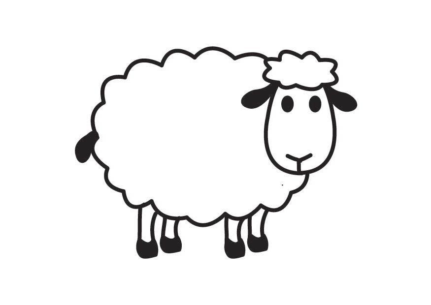 Pages O Draw A Cartoon Sheep Step 5 Animals Sheeps Free.