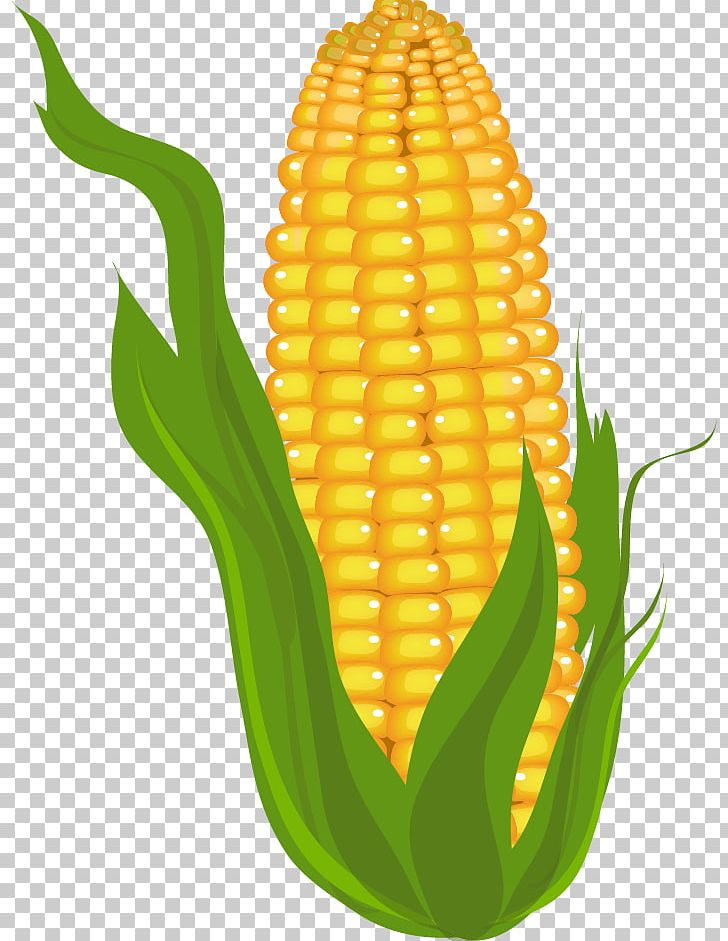 Corn On The Cob Free Content Maize PNG, Clipart, Blog, Clip.