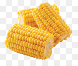 Corn Cob PNG and Corn Cob Transparent Clipart Free Download..