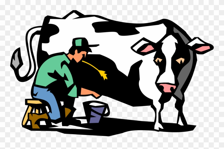 Vector Illustration Of Dairy Farmer Milking Holstein.