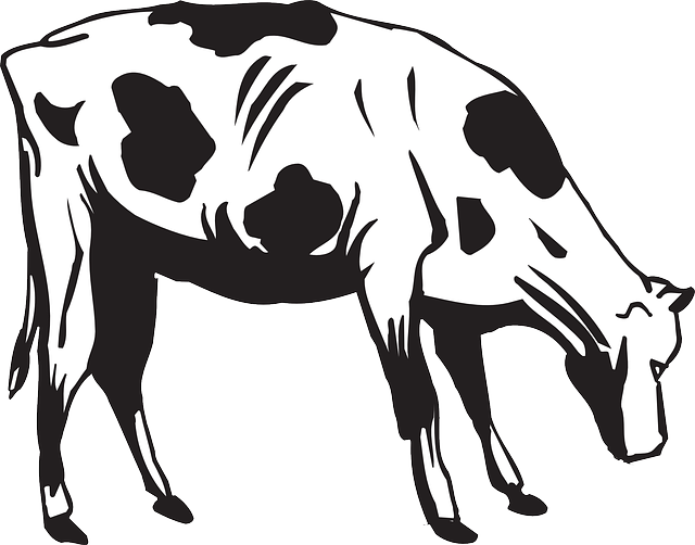 Free vector graphic: Cow, Grazing, Eating, Livestock.