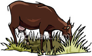Cows eating clipart.