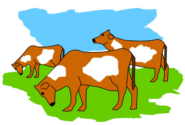 Family Of Cows Clipart.