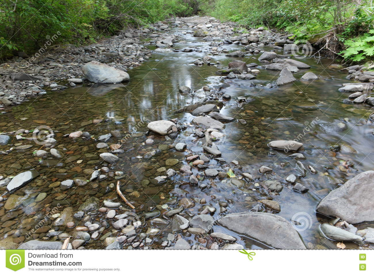 Drying stream bed stock image. Image of shallow, river.