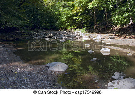 Stock Photographs of Minneopa State Park Creek Bed and Forest.