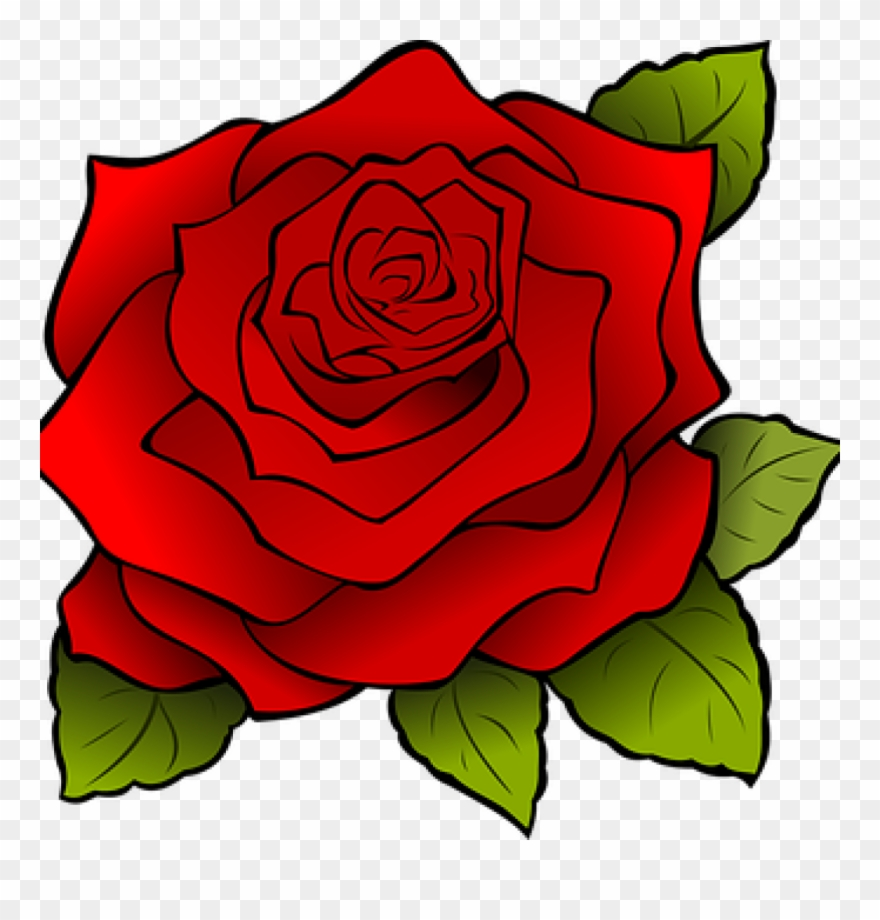 Rose Graphics Free Flowers Vector Graphics Pixabay.