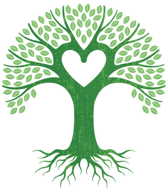Top 60 Family Tree Clip Art Vector Graphics And Illustrations IStock.