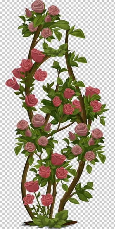 rose bush clip art , Free clipart download.