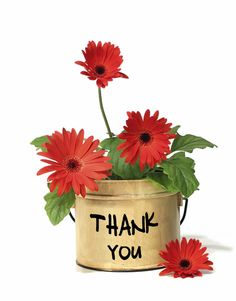 Thank you flowers clip art.