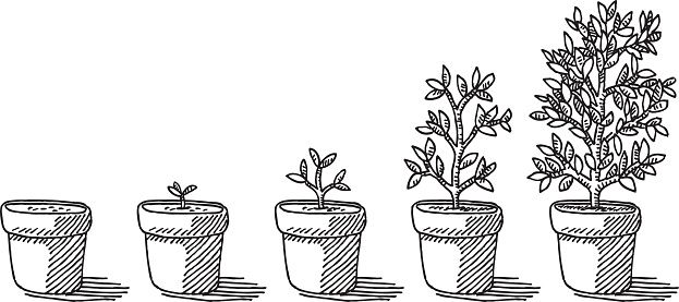 Flower Growing Clipart 72777.