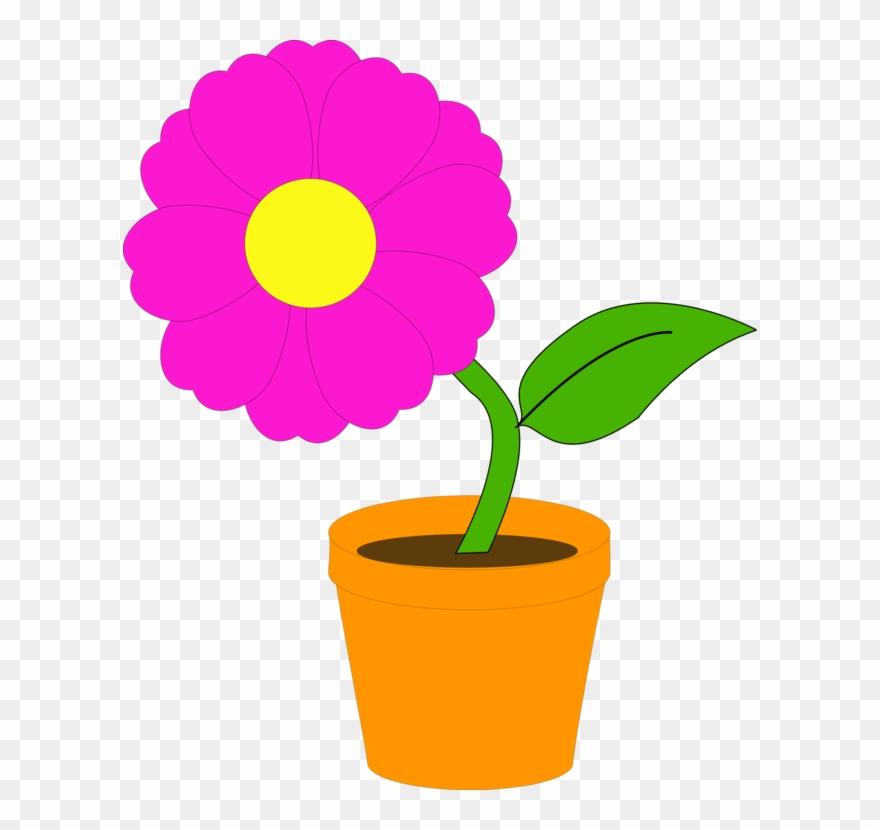 Flowering Pot Plants Flowerpot Houseplant.