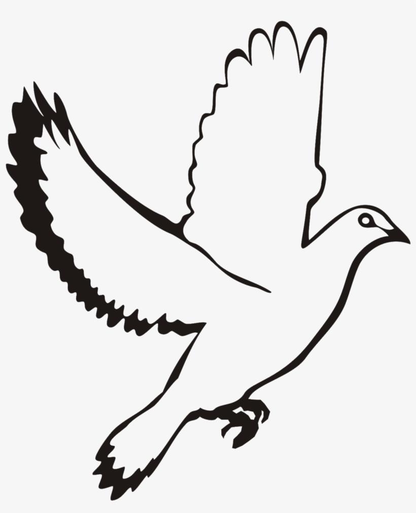 White Flying Dove Clipart.