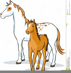 Mare And Foal Clipart.