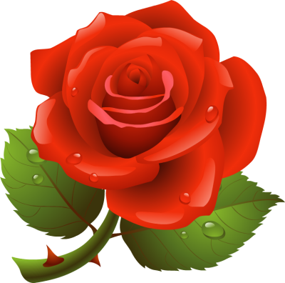 Free Rose Cliparts, Download Free Clip Art, Free Clip Art on.