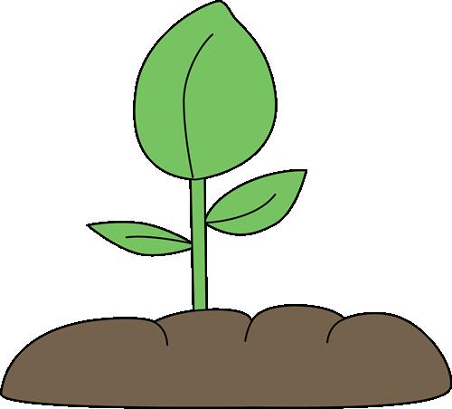 A garden plant clipart #19