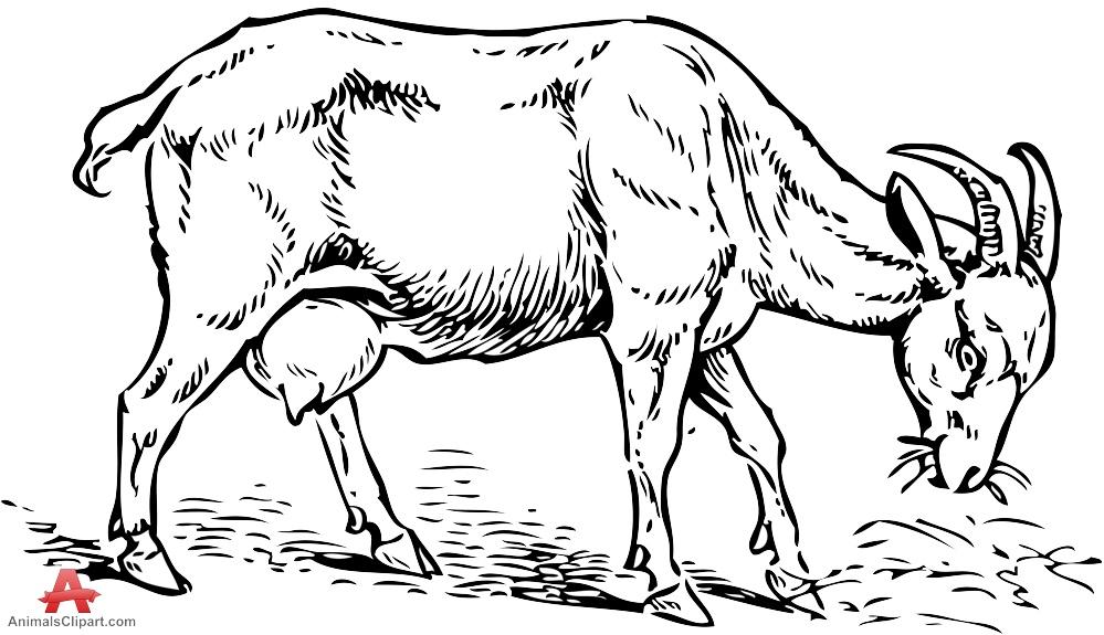 Goat Grazing Clipart Stencil Design.