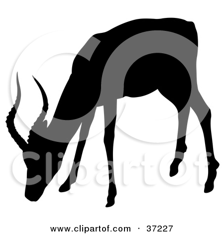 Clipart Illustration of a Black Silhouette Of A Grazing Antelope.