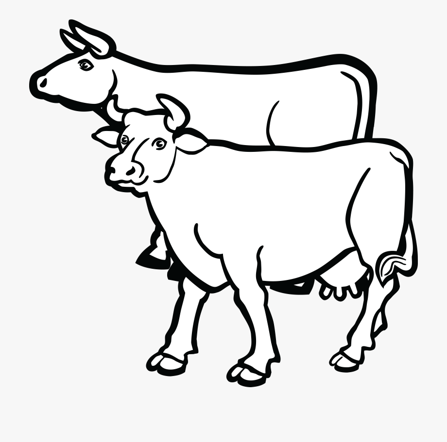 Free Clipart Of A Pair Of Cows.