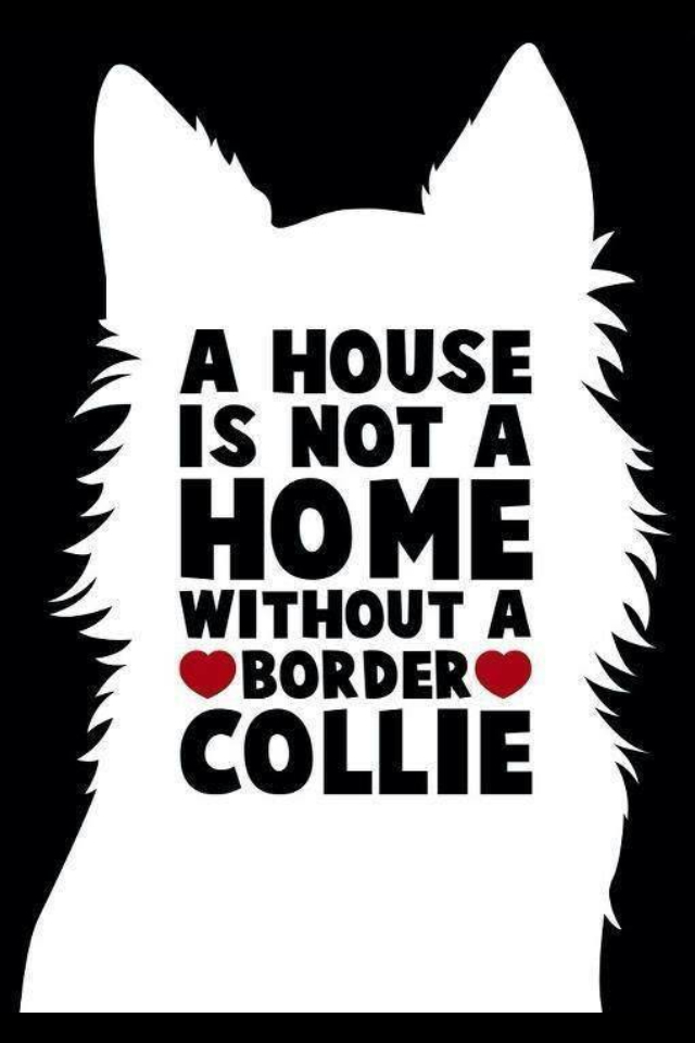 A House Is Not A Home Without A Great Dane Clipart Black And White.