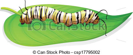 The butterfly larva clipart - Clipground