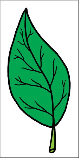 Clip Art: Leaf Parts Color Unlabeled I abcteach.com.