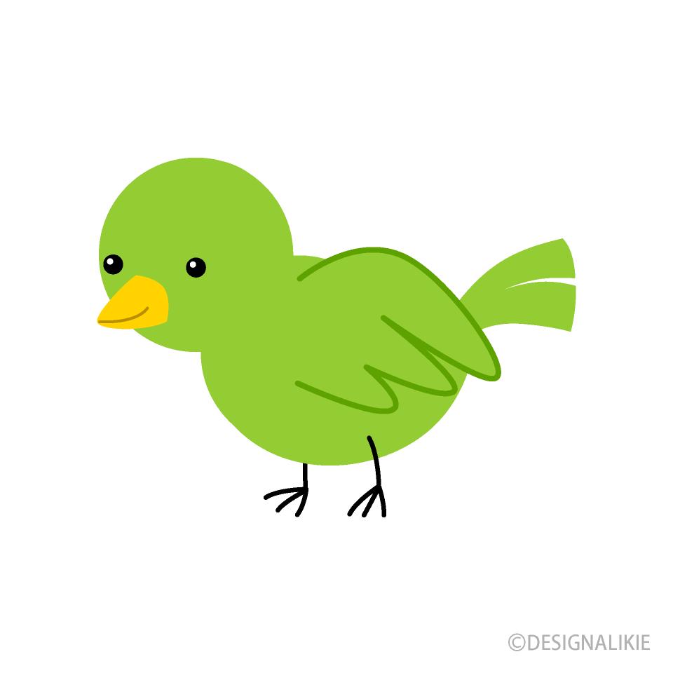 Free Green Little Bird Clipart Image|Illustoon.