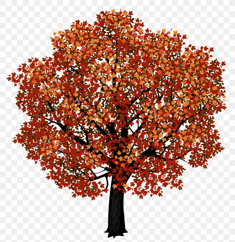 Red Maple Japanese Maple Autumn Leaf Color Clip Art, PNG.