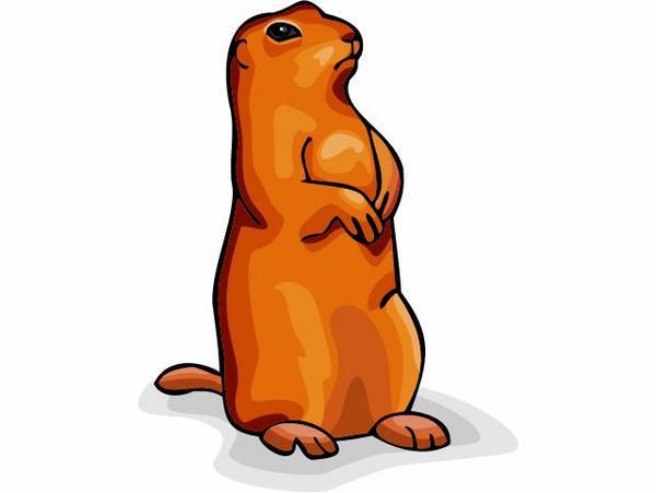 Marmot Clipart.