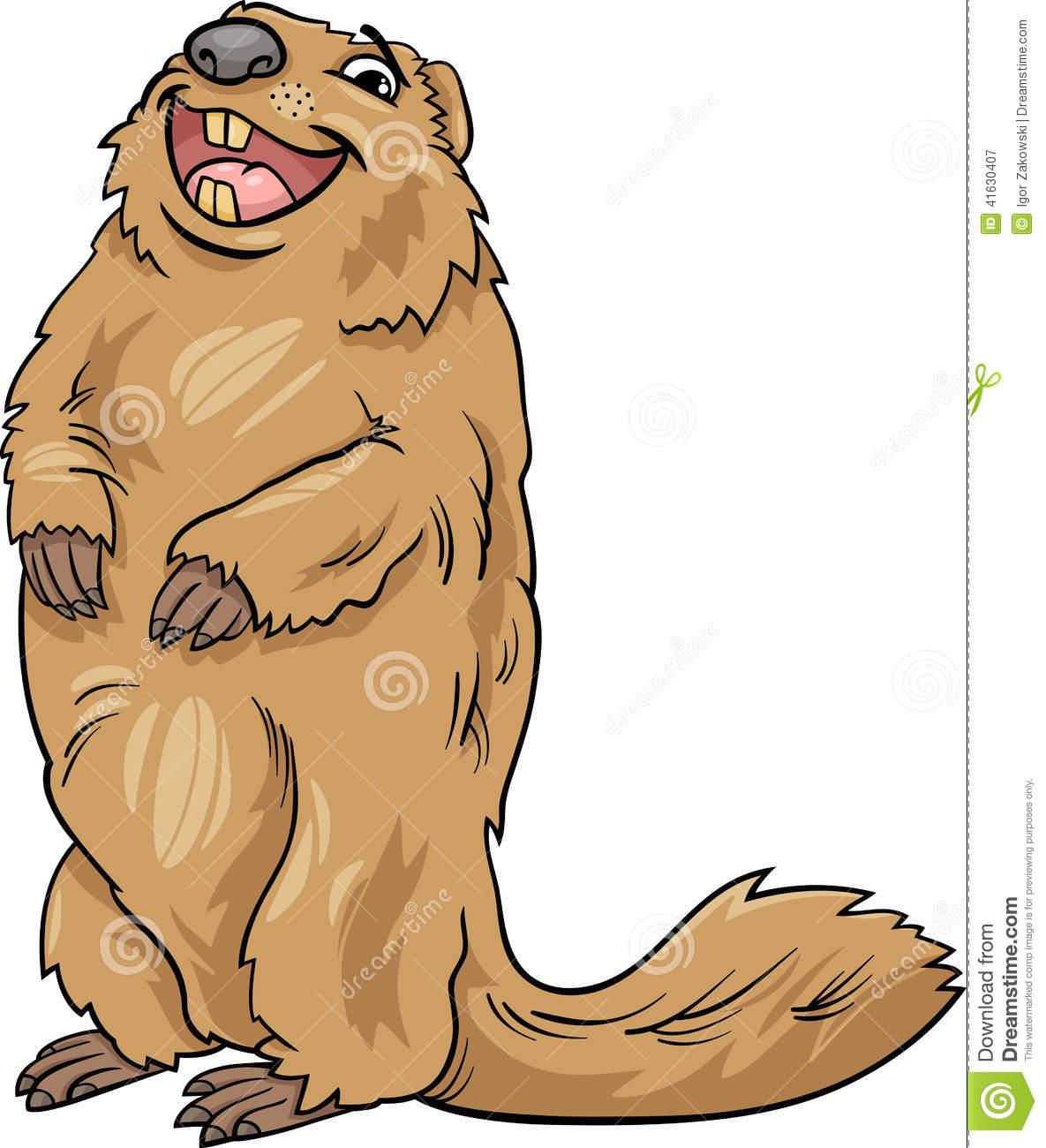 Marmot Animal Cartoon Illustration Stock Vector.