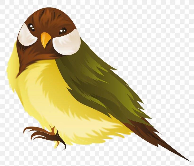 Bird Parrot Domestic Canary Clip Art, PNG, 2252x1931px, Bird.