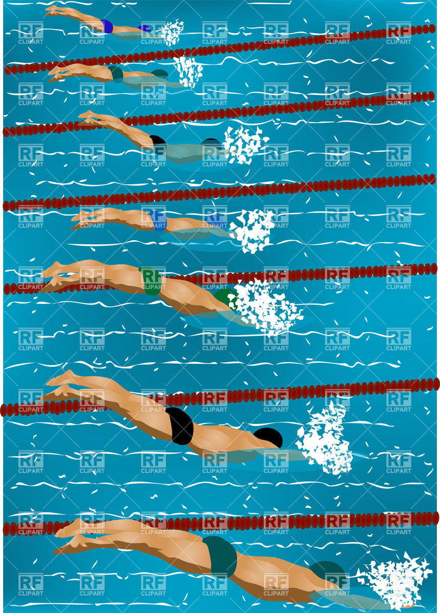 Swimmers diving into swimming pool Vector Image #25325.