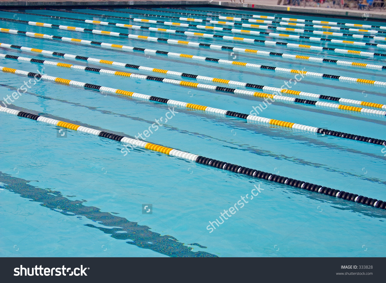 An Olympic Size Swimming Pool For Competition Stock Photo 333828.