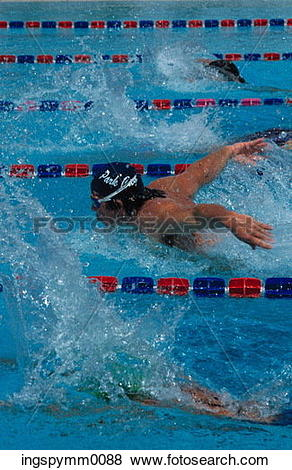 Pictures of Man swimming the butterfly stroke in an eight lane.