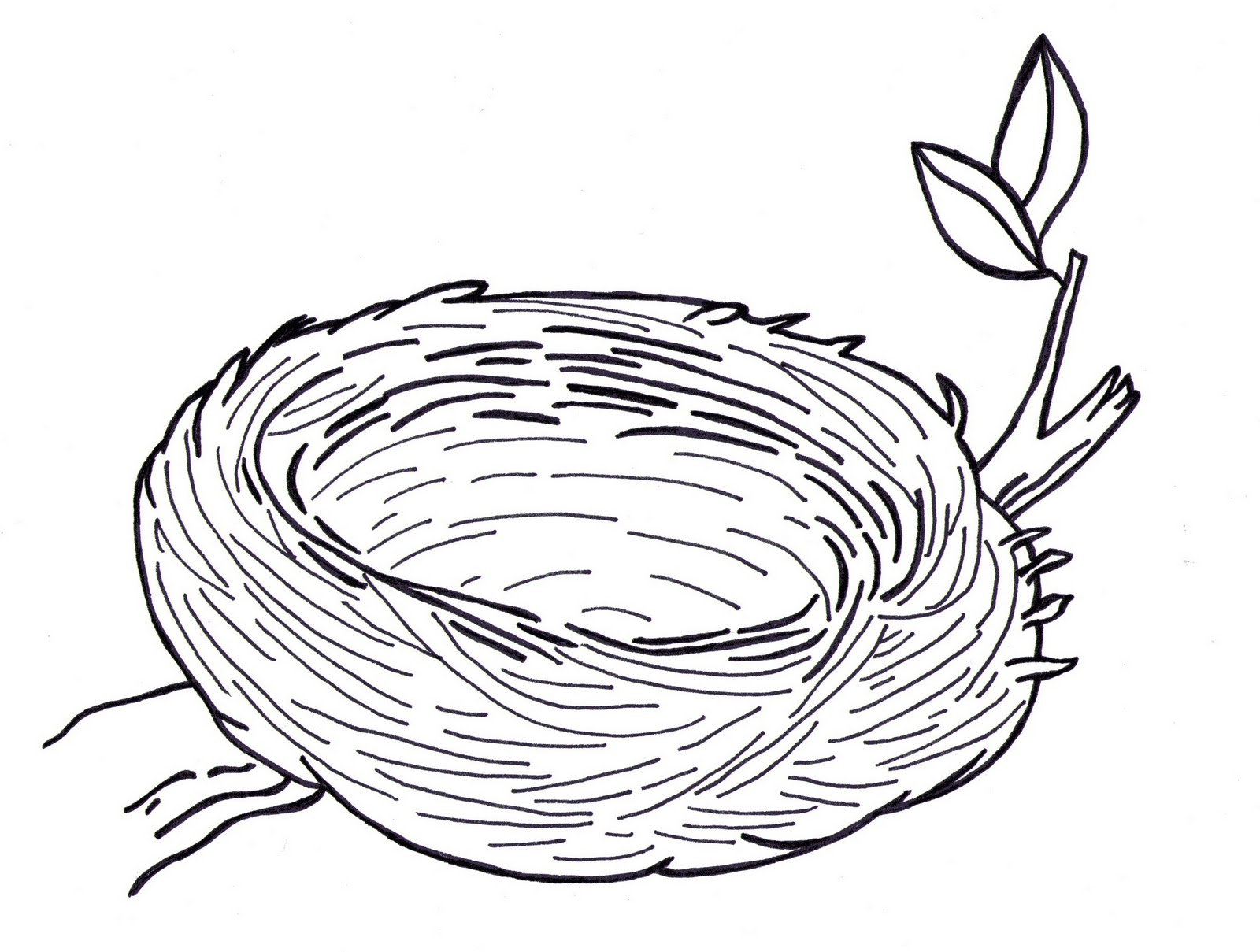 Free Nest Outline Cliparts, Download Free Clip Art, Free.