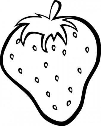 Fruit Outline Clipart.
