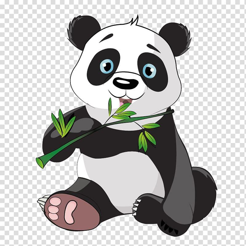 Giant panda Bear Red panda Drawing, bear transparent.